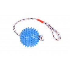 Игр. д/с Резиновый мяч на веревке